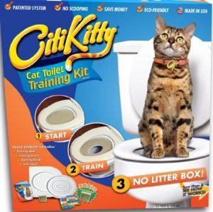 CitiKitty